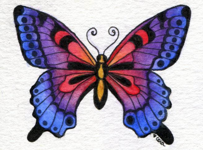 ButterflyNo1_LR