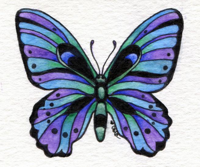 butterflyNo2_LR