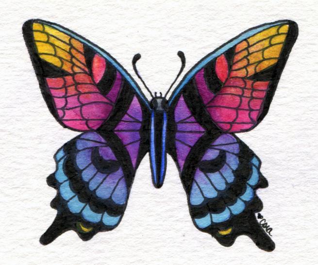 butterflyNo3_LR